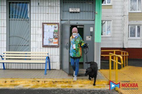 Новые друзья: собака-поводырь и волонтер объединили усилия, чтобы помочь хозяину