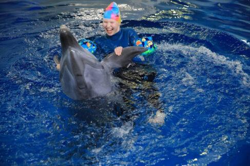Дельфинотерапия ипрофессиональная ориентация: как столичные НКО помогают детям синвалидностью