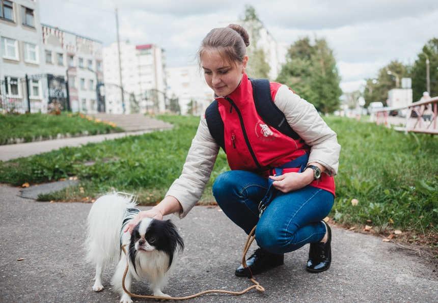 Сотрудники сервиса повыгулу ипередержке собак «Гульдог» пришли напомощь москвичам всамоизоляции