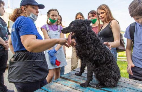 Полезное лето. Столичные школьники изучили работу спасателей вонлайн-лагере «PROГероев»