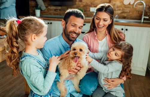Счастье— это когда мама ипапа рядом! Как создать гармоничные семейные отношения: советы специалиста